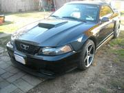 Ford Mustang Ford Mustang GT Convertible 2-Door